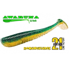 Pontoon 21 Awaruna 3.5