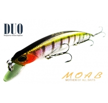 DUO Moab 120F