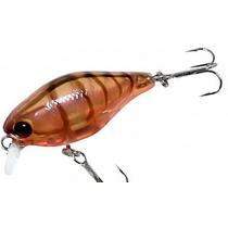 Jackall 10CC 50F #brown suji shrimp
